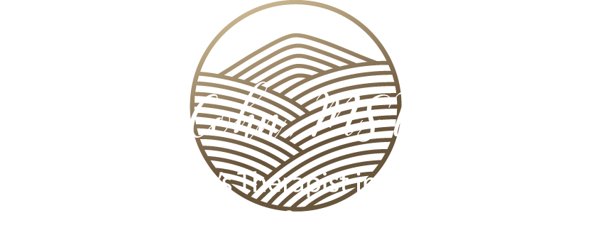 Anita D. Cohn, MSW, LCSW  A Women's Therapist in St. Louis, Missouri